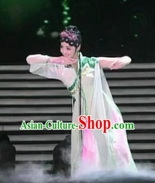 Traditional Chinese Classical Dance Chun Se Costume Group Dance Spring Scenery Dress for Women