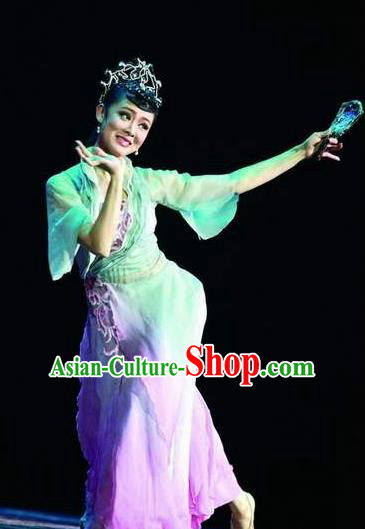 Traditional Chinese Classical Dance Dian Jiang Chun Costume Solo Ballet Dance Dress for Women
