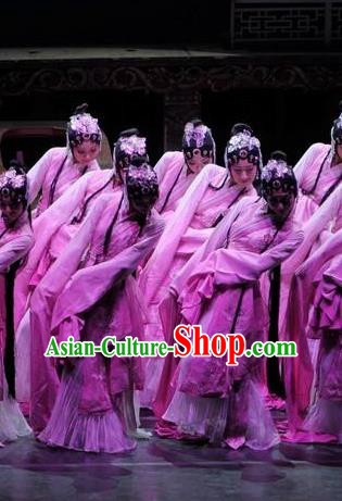Traditional Chinese Classical Dance Fen Mo Chun Qiu Costume Beijing Opera Beautiful Dance Pink Dress for Women