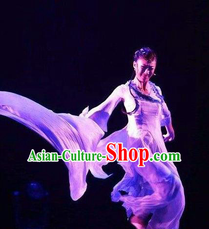 Traditional Chinese Classical Dance Ballet Ru Yan Costume Stage Show Beautiful Dance Dress for Women