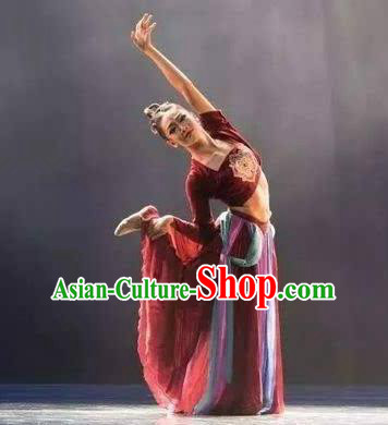 Chinese Beautiful Dance Wen Yue Costume Traditional Fan Dance Classical Dance Competition Dress for Women